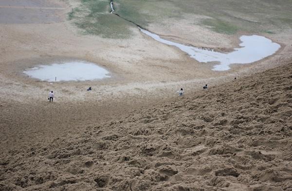 鳥取砂丘、馬の背の下に出来てるオアシスの写真