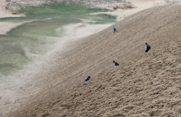 鳥取砂丘、馬の背の斜面と、降りていく人達の様子の写真