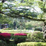兼六園の新緑とツツジの庭園の写真