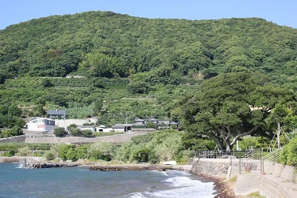 潮井崎公園から見える長与のミカン畑がある綺麗な山と海と公園の写真