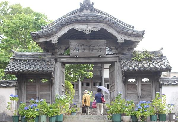 中島聖堂遺構大学門と紫陽花の写真