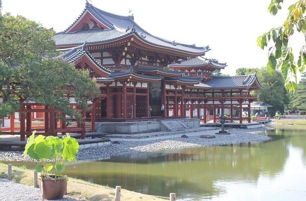 平等院の外観、池、蓮の鉢の写真