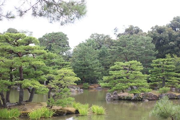 金閣寺の鏡湖池、小さな島々にに松がある様子の写真