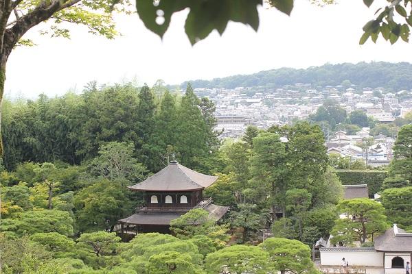 緑の木々に囲まれてる銀閣寺の写真