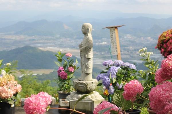 大聖寺、ぴん・ころりん地蔵尊と紫陽花、見下ろす風景の写真