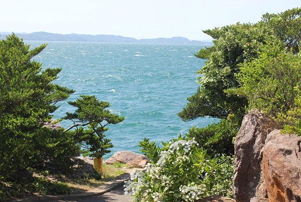 堂崎鼻の風景写真(大村湾と島、植物の様子)