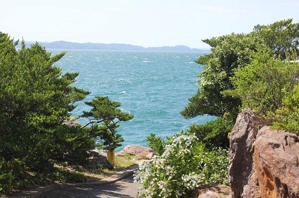 堂崎鼻の入り口の景色、美しい海や島、植物の写真