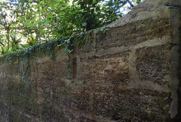 備瀬のイノーの砂岩で作られた屋敷の壁の写真