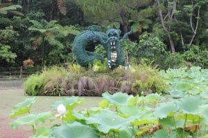 ビオスの丘の天染池(てぃんずみぐむい)に咲くハスの花と龍のトピアリーの写真