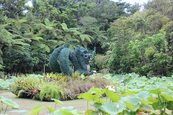 ビオスの丘の天染池の中にあるハスと龍のトピアリーの写真