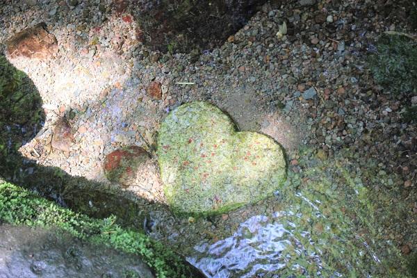 水飲み場にあるハートの石の写真