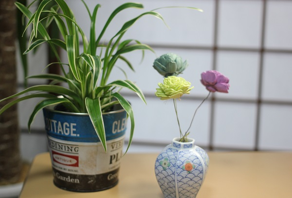 レトロな花瓶にソーラーローズを活けた様子と植物の鉢の写真