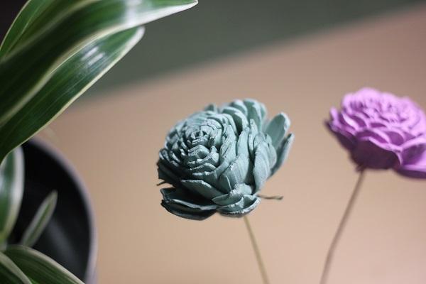 青緑と紫のソーラーローズの写真