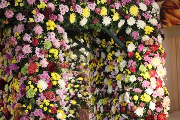トンネルみたいになっているダリアの柱の写真