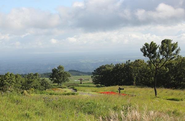 ヒコダイ公園内の風景写真、草原と木々、山々や空の様子