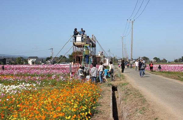 三光コスモス園、コスモスアートエリアに常設してあるやぐらの写真