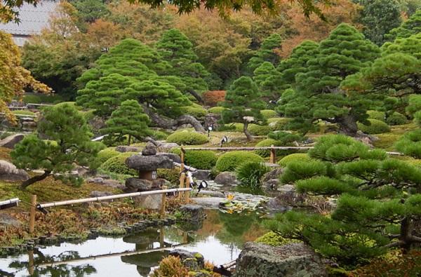 由志園の秋、紅葉した日本庭園の写真