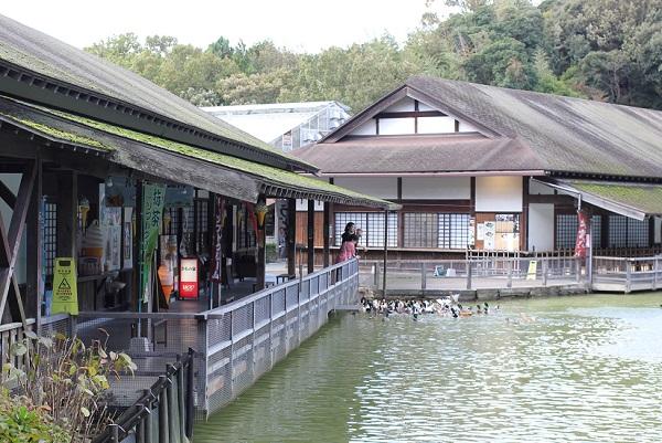 松山フォーゲルパーク、池と売店、食事処の写真