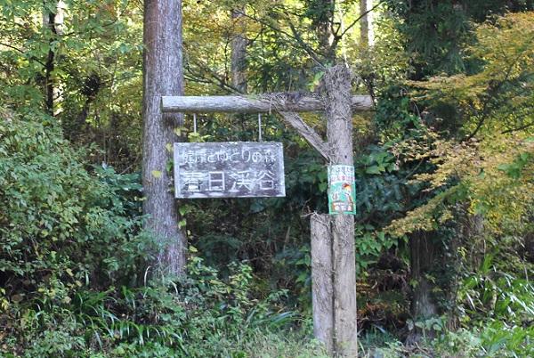 「嬉野みどりの森 春日渓谷」の木で出来た看板の写真