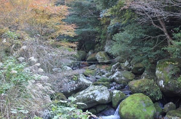春日渓谷、吉田川と紅葉の写真