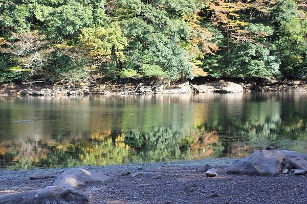 広川原池と紅葉の写真