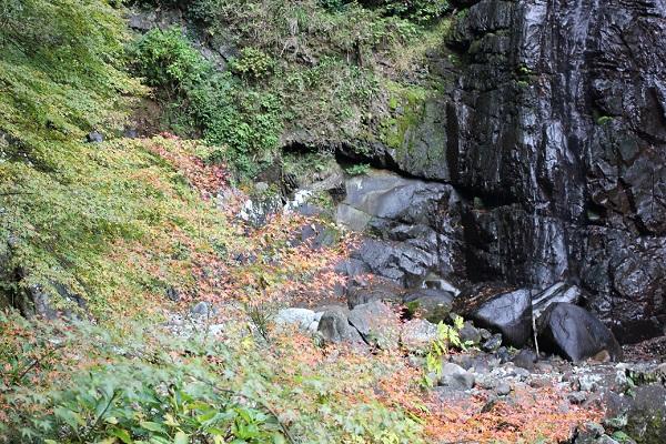轟渓流、滝とモミジの落ち葉の写真