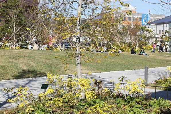 大村 ミライon図書館の芝生の庭でランチをしている人々の写真