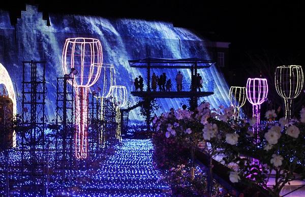 ハウスンボス、アートガーデンのイルミネーション (バラの花)の写真