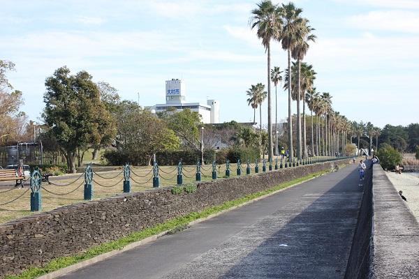 森園公園、海側の道路の写真