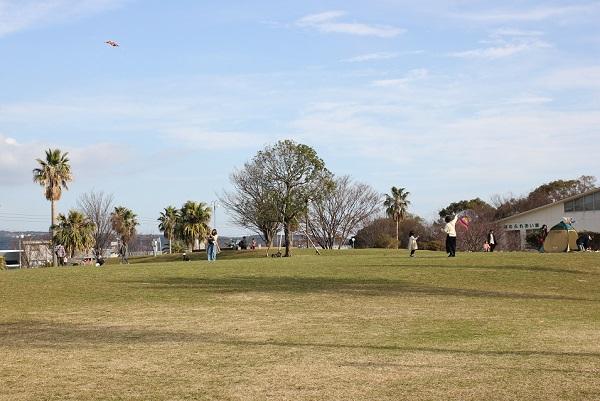 森園公園、広い芝生公園で凧揚げをしてる人の写真