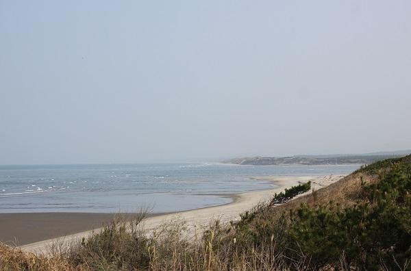 高台から見た吹上浜海岸砂丘の写真