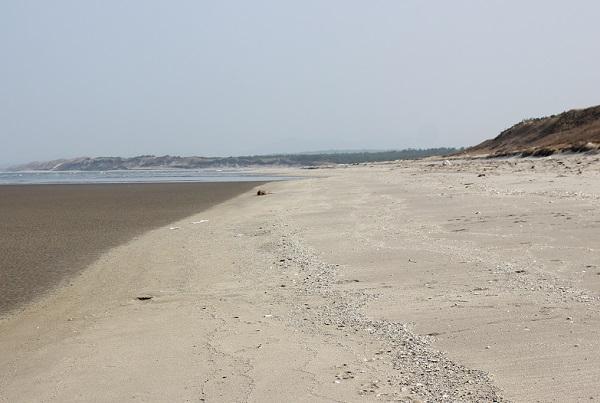 吹上浜海岸砂丘の写真