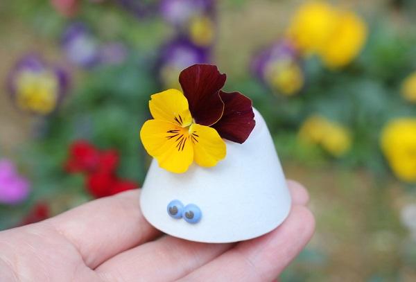 椎猫白魚(しいね しらうお)の目玉がある小さな花瓶にビオラを飾った写真。背景にビオラの花壇