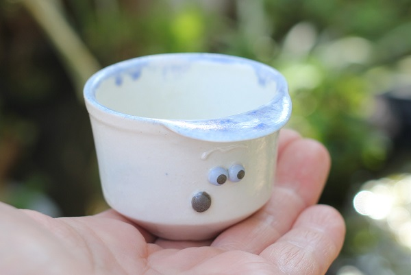 椎猫白魚(しいね しらうお)、手のひらに乗せてみた帽子とユニークな顔が可愛い小さな植木鉢の写真