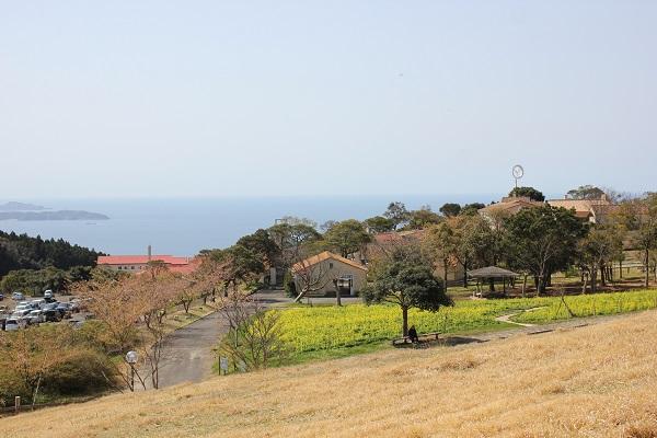 里山へ向かう道から見えるあぐりの丘の風景写真