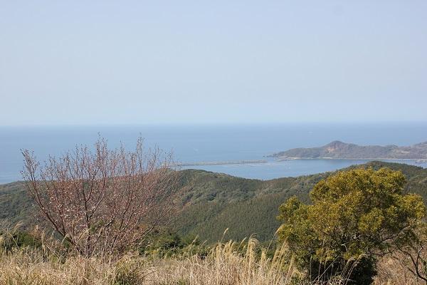 式見牧場の水タンクから見える美しい景色の写真(海や島)