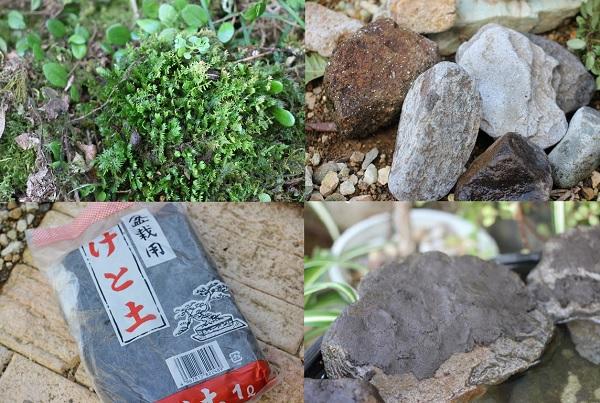 メダカ池の材料、コケ、けと土、石などの写真