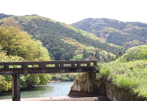 山とため池の写真