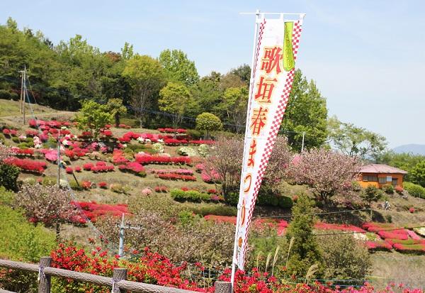 歌垣公園、歌垣春まつりの旗の写真