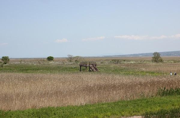 諫早湾干拓地の展望所の写真