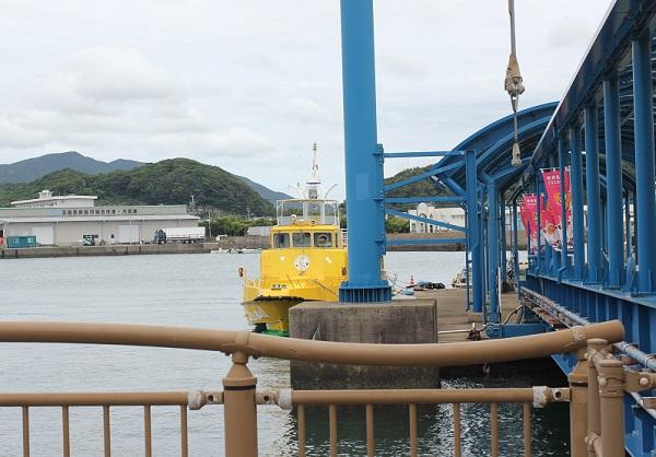 港の桟橋とシーガルの写真