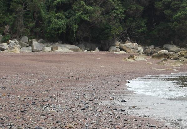 「ぜぜヶ浦」海岸風景。
