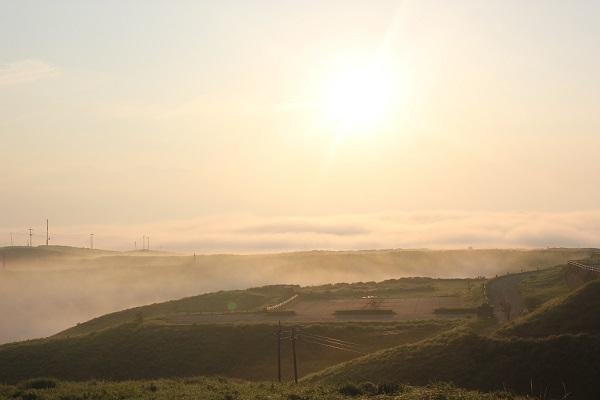 大観峰(だいかんぼう)の朝焼け、太陽と雲海