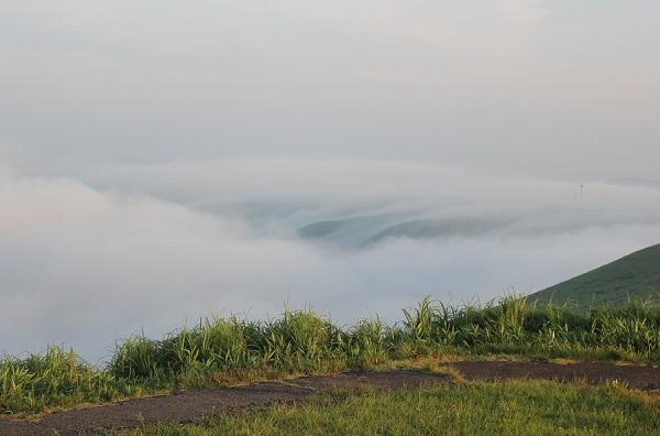 大観峰(だいかんぼう)の展望台へ行く道から見た美しい雲海