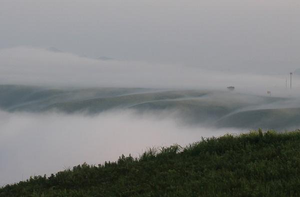 大観峰(だいかんぼう)、雲海の様子