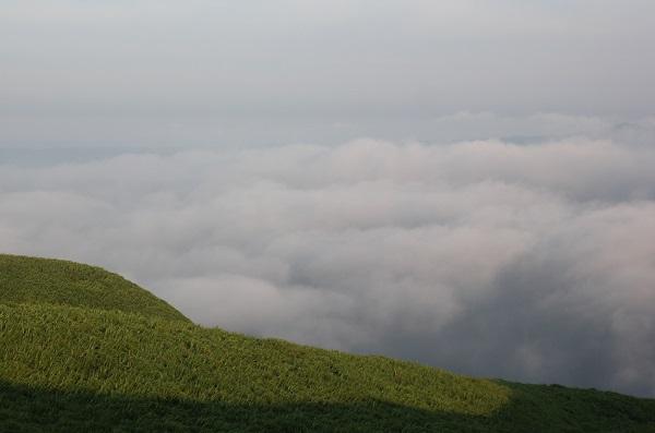 大観峰(だいかんぼう)もくもくとした雲海